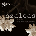 stasia azaleas album art design